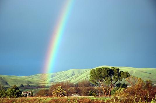 cali rainbow